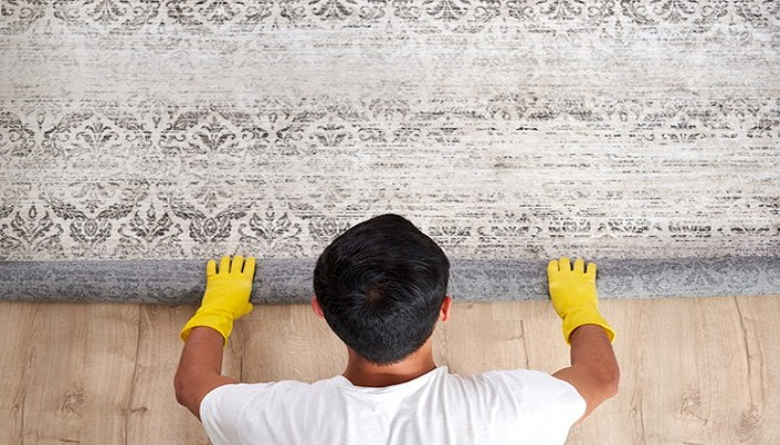 carpet services in tampa