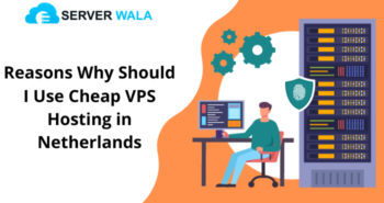 Reasons Why Should I Use Cheap VPS Hosting in Netherlands